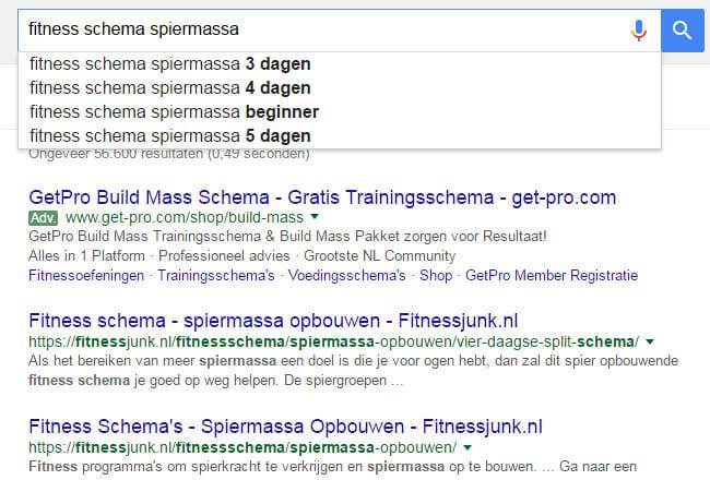 fitness-schema-google
